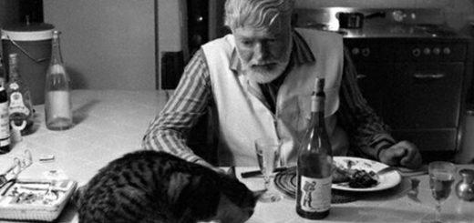 Черно- белый Хэмингуэй с кошкой и кальвадосом.