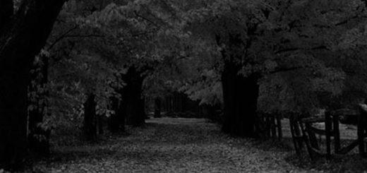 Темные Аллеи Бунина