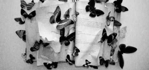 Черно-белая картинка, книга с бабочками