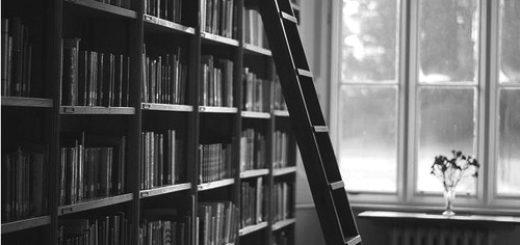 Черно-белая картинка, книги, полка, домашняя библиотека