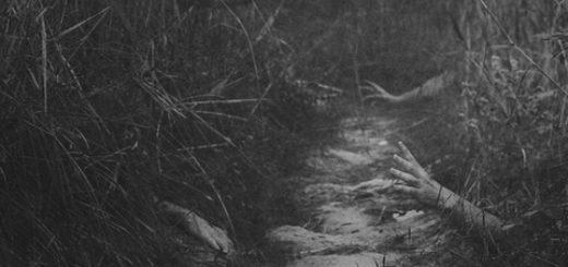 Руки, высовывающиеся из травы, страх, ужас, кошмар, черно-белая картинка