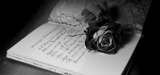 Сочинение, роза на бумаге, любовное послание, черно-белое фото