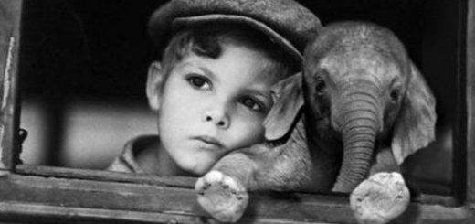 Мальчик с игрушкой, черно-белая картинка
