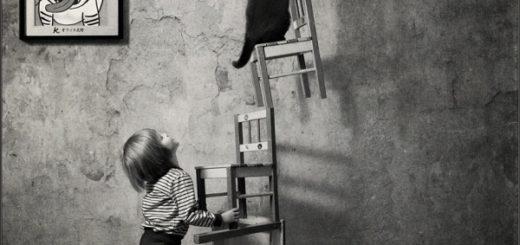 кот и ребенок, опыт, черно-белое фото