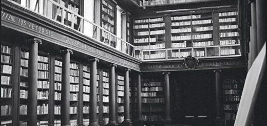библиотека домашняя, черно-белое фото