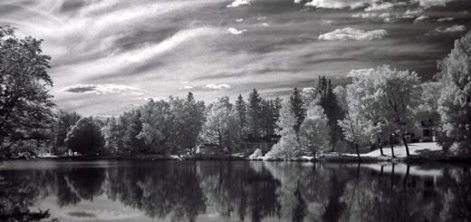 русская природа, черно-белое фото