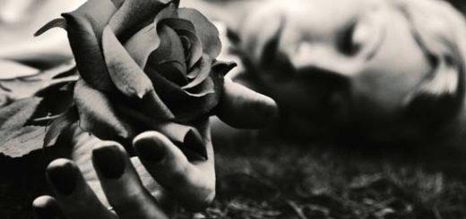 женщина и роза, черно-белое фото
