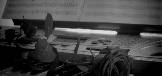роза на рояле, черно-белое фото