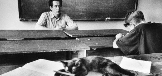 студенты, кафедра, кот, черно-белое фото