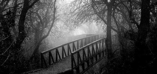 пейзаж, мост, туман, черно-белое фото