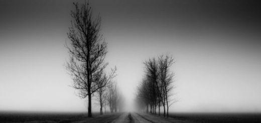 образ дороги, черно-белое фото