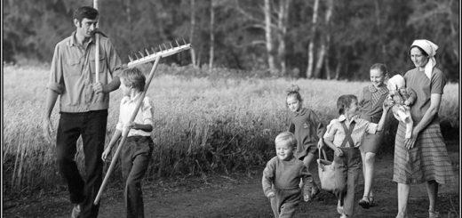 лето в селе, семья и лето