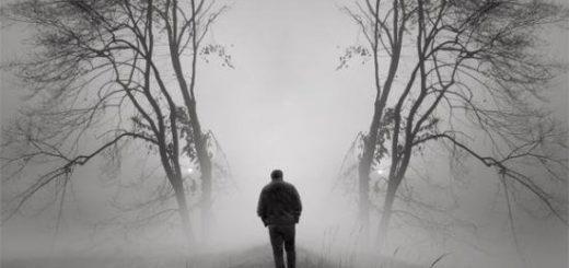 одинокий человек, большая ива, туман