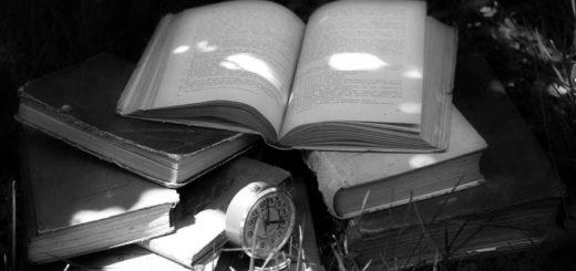 книги, стопка книг на траве, красивое фото