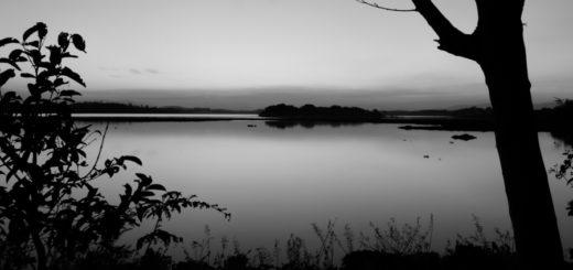 природа, берег реки, сумерки