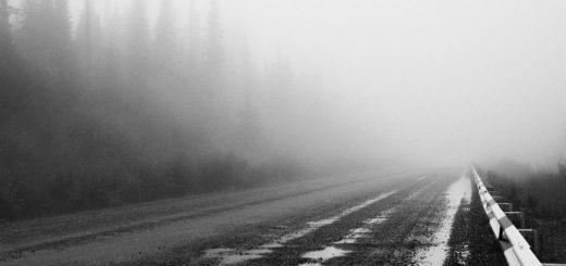 туманная дорога, осень