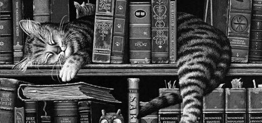 кошка на книжной полке