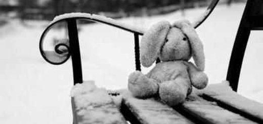 кролик на скамейке, одиночество