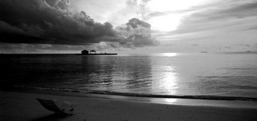 природа: морской берег