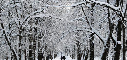 зимний пейзаж, зимний парк