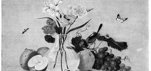 Цветы, фрукты, птица