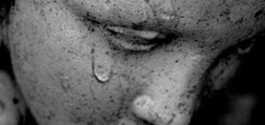 жалость, сострадание, сочувствие