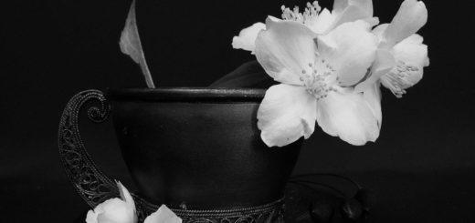 цветки вишни в красивой чашке