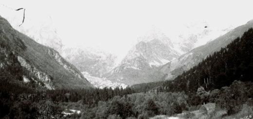 Кавказ, горы, лес, природа