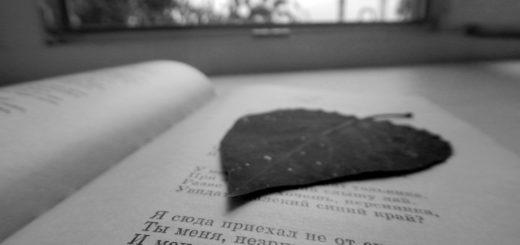книга с листом, осень, чтение, гербарий