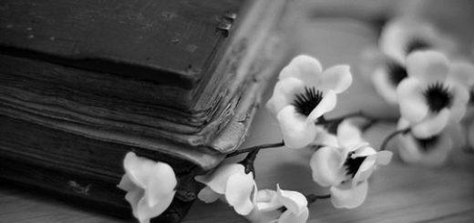 старинная книга и цветок