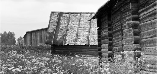 деревня, дома, поля