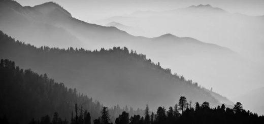 горы, туман, леса