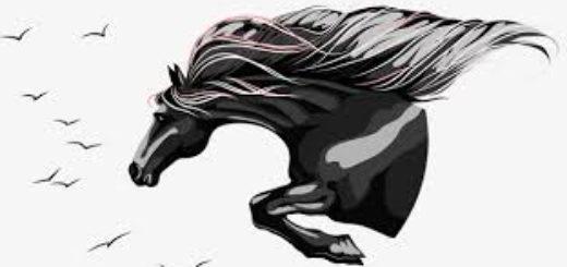 степная кобылица, лошадь, конь