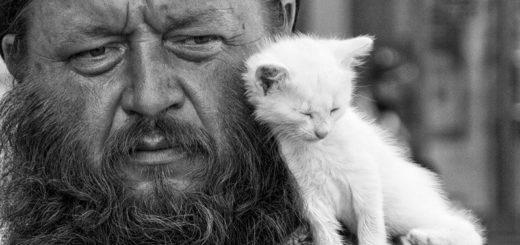 доброта, сочувствие, милосердие