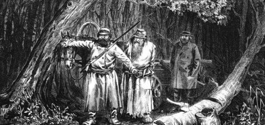 иллюстрация к рассказу Тургенева Бирюк