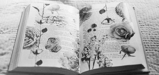 книга с цветами, гербарий