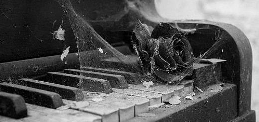 настоящее искусство, пианино, роза