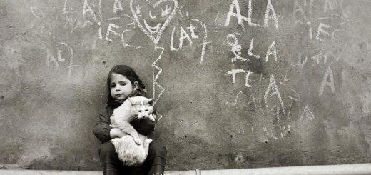 девочка держит кота, доброта